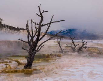 Yellowstone Mammoth Hot Springs Sunset Fine Art Canvas Ready to Hang