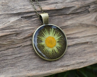 Real Daisy Flower Resin Pendant Necklace- Handcrafted