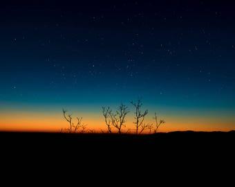 "Landscape Photography, ""Stars in a Sunset"" Yosemite, Tree Silhouette, Night Sky, Stars, Landscape Photo, Sunset, Nature, Limited Edition"