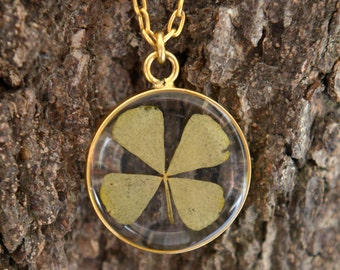 four leaved lucky clover in gold plated frame, luck pendant, good luck gift, gift for her, gift under 30, unique  botanical jewellery,