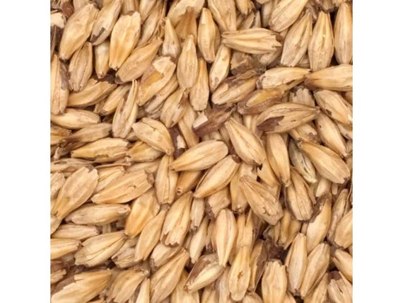 All Natural Raw HONEY Brewers Malted Grain For Home Beer Brewing 1 Pound