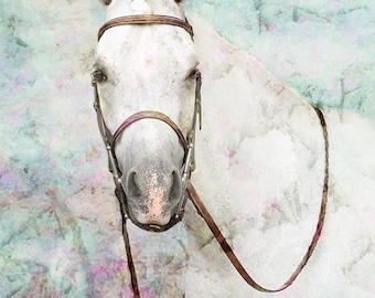 desk gift her, horse lover, white, turquoise, pink, blue, living room, wall art, large wall art, girls room, photography, gray, horse