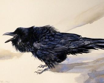 Raven artwork raven prints bird art black raven raven watercolor prints bird prints