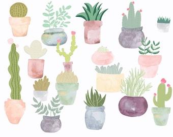 Say Aloe! Succulent Print, 5x7