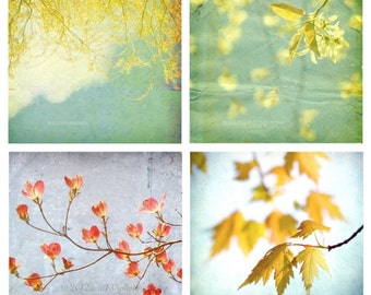 Teal Blue, Mustard Yellow, Trees, Cottage Chic, Home Decor, Shabby Chic, Fine Art Photography Set of 4 Photos, Leaves Print Pack 5x5