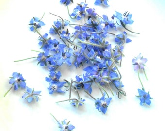 50 + Organic Real Candied BORAGE BLOSSOMS, Purple Blue, Edible Flowers, Bulk, Wedding Cakes, Cup Cake Toppings