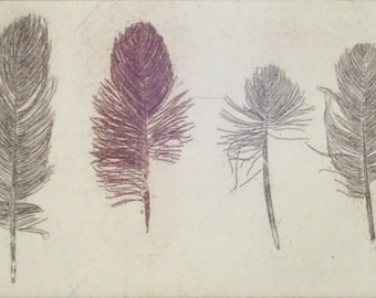 original etching of a feather, hand pulled