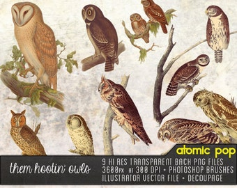 Instant Download // Hootin' Owls // Vintage Nature Specimen Graphic Design Vector, Decoupage PNG FIles, Photoshop Brushes Clipart