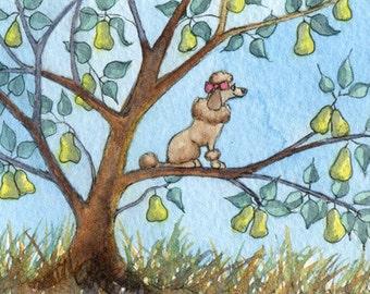 Poodle dog pear tree 8x10 print -  Christmas carol song