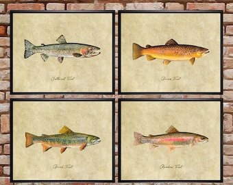 Trout Print Set of 4, Fish Print Trout Poster Gift for Fisherman Fishing Gift Freshwater Fish Fly Fishing #vi1102