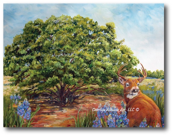 Bluebonnets in the Texas Hill Country with the Deer Painting   Original Pretty Texas Blue Bonnets and Deer Painting   Art Prints, Originals