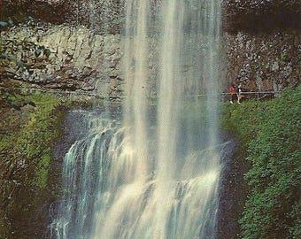Vintage Oregon Postcard Silver Falls State Park