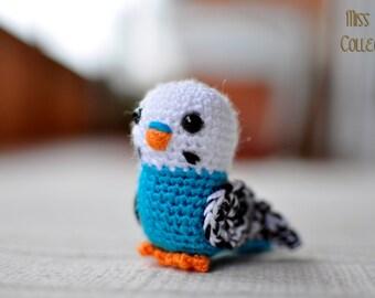 Parakeet (Budgie)