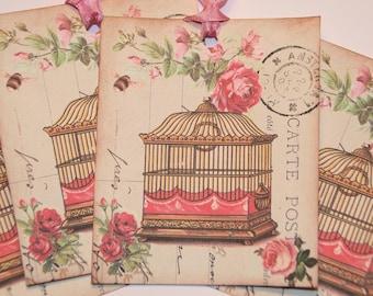 Pink Birdcage Roses Paris Postcard Gift Tags