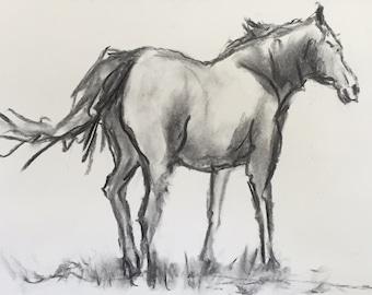 Original Charcoal Drawing