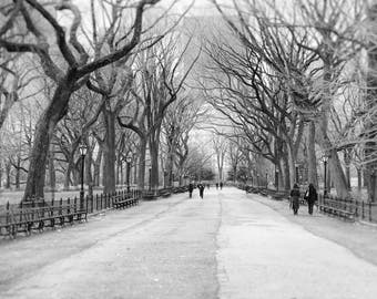 Central Park, Trees, New York Photography, Black and White, Pathway, Winter, Landscape Photo, Nature, Fine Art Print, Wall Art, Home Decor