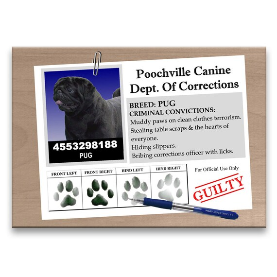 Pug Rap Sheet Fridge Magnet (Black)