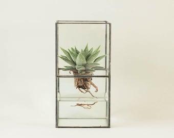 Geometric glass terrarium including cactus-Indoor planter-Tiffany stained glass-Minimalistic-Glass planter-Modern home decor
