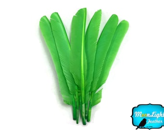 Wholesale Turkey Feathers,  1/4 lb - LIME GREEN Turkey Pointers Primary Wing Quill Large Wholesale Feathers (bulk) : 3857