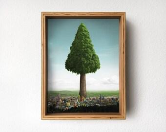 Big Ole Tree, Birch Moriki Frame (5 Play)