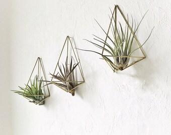 3er-Set Himmeli Wand Pflanzenhänger Polyhedron No01