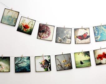 Set of 12 art postcards - set Nature 01