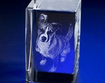 Laser Engrave Photo Crystal Rectangle,  Custom 3D Crystal Cube, Picture in Glass Gift by Goodcount**FREE SHIPPING**