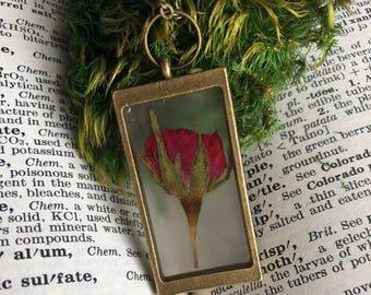Red rose botanical necklace, real preserved red rose