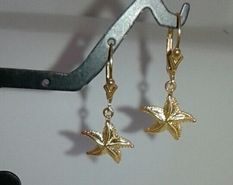 Starfish 14K Solid Gold Earrings