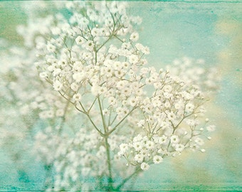Baby's Breath Flower Print, Housewarming Gift,  Flower Photography, Floral Art Print, White Turquoise Wall Decor, Cottage Chic. Bedroom Art
