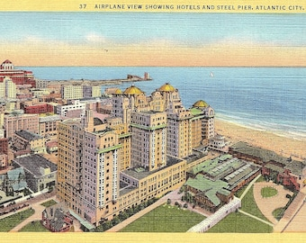 Atlantic City, New Jersey, Hotels, Steel Pier - Postcard - Vintage Postcard - Unused (VV)