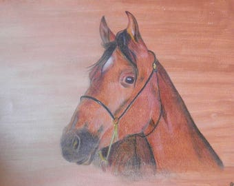 "Drawing ""horse"" with color pencils"