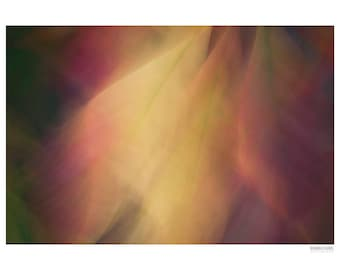 Abstract Photography PRINT, Blowing in the Wind, Wall Art