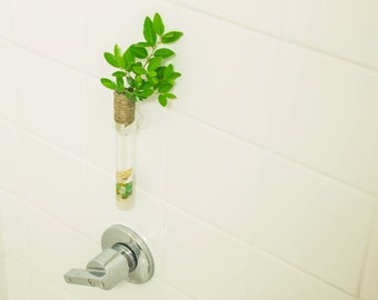 Glass vase- Glass test tube bud vase with suction cup to beautify your home, office, kitchen, bathroom any where you like.