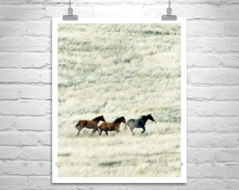 Horse Photography, Horse Art, Horse Print, Horse Picture, Wild Horses, Equestrian Art, Prairie Landscape, Ranch Art, Equine Art, Horse Gift