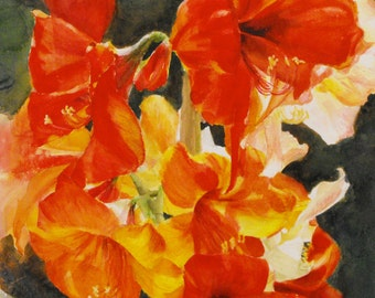 "Original watercolor painting of red amaryllis flowers, ""Sunsplash"", by Nancy Reyna. 18""x18."