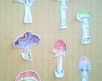 Mushrooms Art Sticker Set