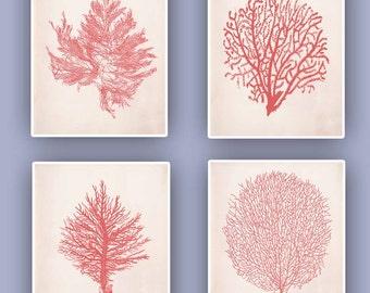 Sea fan prints, in garnet or in blue Nautical prints  modern vintage inspired  by coral, kelp, gorgonian, seaweed, set of 4 prints 8x10,