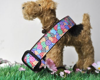 Dog Collar - Candy Crush -  50% Profits to Dog Rescue