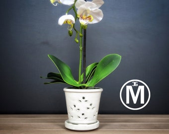 "Waikiki 2018 Edition (MEDIUM 5.5"") Handmade Ceramic Orchid Pot With Attached Saucer, Orchid Planter, Glazed Pottery 