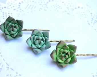 Green succulent hair clip booby pin. Succulent hair jewelry. Rustic hair clip bobby pin hair accessory jewelry. Planter hair clip bobby pin