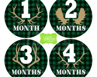 Plaid Baby Monthly Stickers - Baby Bodysuit Stickers - Hunting Monthly Baby Stickers - Boy Monthly Stickers - 061