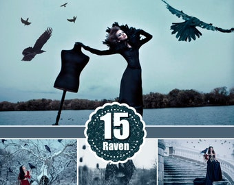 Birds crow raven photoshop overlays, realistic natural flying, photo layer, animals overlay, mystical photo shoot, png file