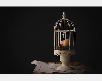 Egg photo, Birdcage Photo, Food Photography, Kitchen Art, Food & Drink, Farm House, Cooking, Dining, Kitchen Photo