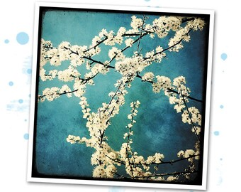 Waiting for spring - photo art signed 20x20cm