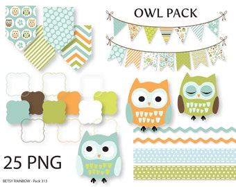 Owl clipart, owl digital clipart, owl bunting, owl banner, digital frames, owls, clip art, scrapbook supplies - BR 313