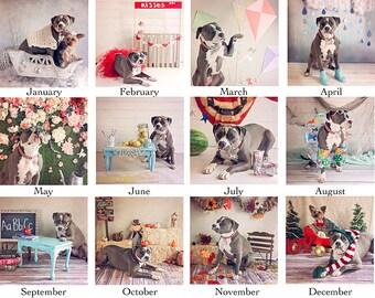 Rosie The Bulldozer Calendar