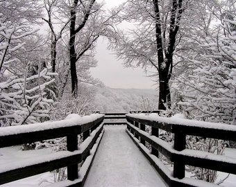 Winter Scene 16x20 Snowfall Symmetry Black and White Snow Photography Elegant Home Decor Wall Art