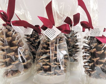 100 Pine Cone Fire Starter Corporate Christmas Party Favors - Promotional Gift Idea - Company Holiday Party Favors - DIY Packaging Option