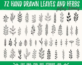 Hand drawn leaves and branches. Svg design elements. Vector clip art for personal and commercial use. Cutting files. Dxf, Png, Svg, Studio3.